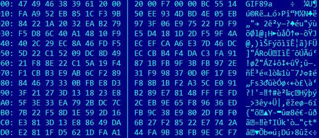 Ein Abbild des Binärcodes.