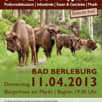 Wisent Party-Flyer