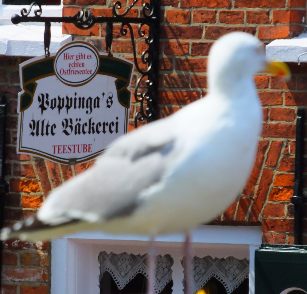 greetsiel_poppingas_cafe_bySchulzPhotographie